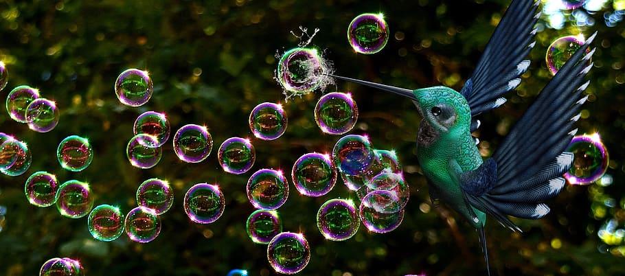 Bublina, nebo reálný růst?